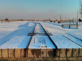 Auschwitz.